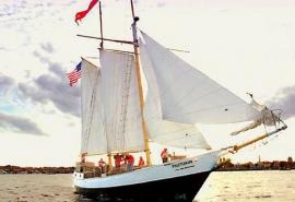 fins_freedom_sail_5x3