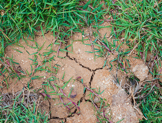 soil problems foundation repair