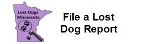 File a Lost Dog Report