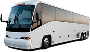 Tampa Airport Elite Shuttle Inc.