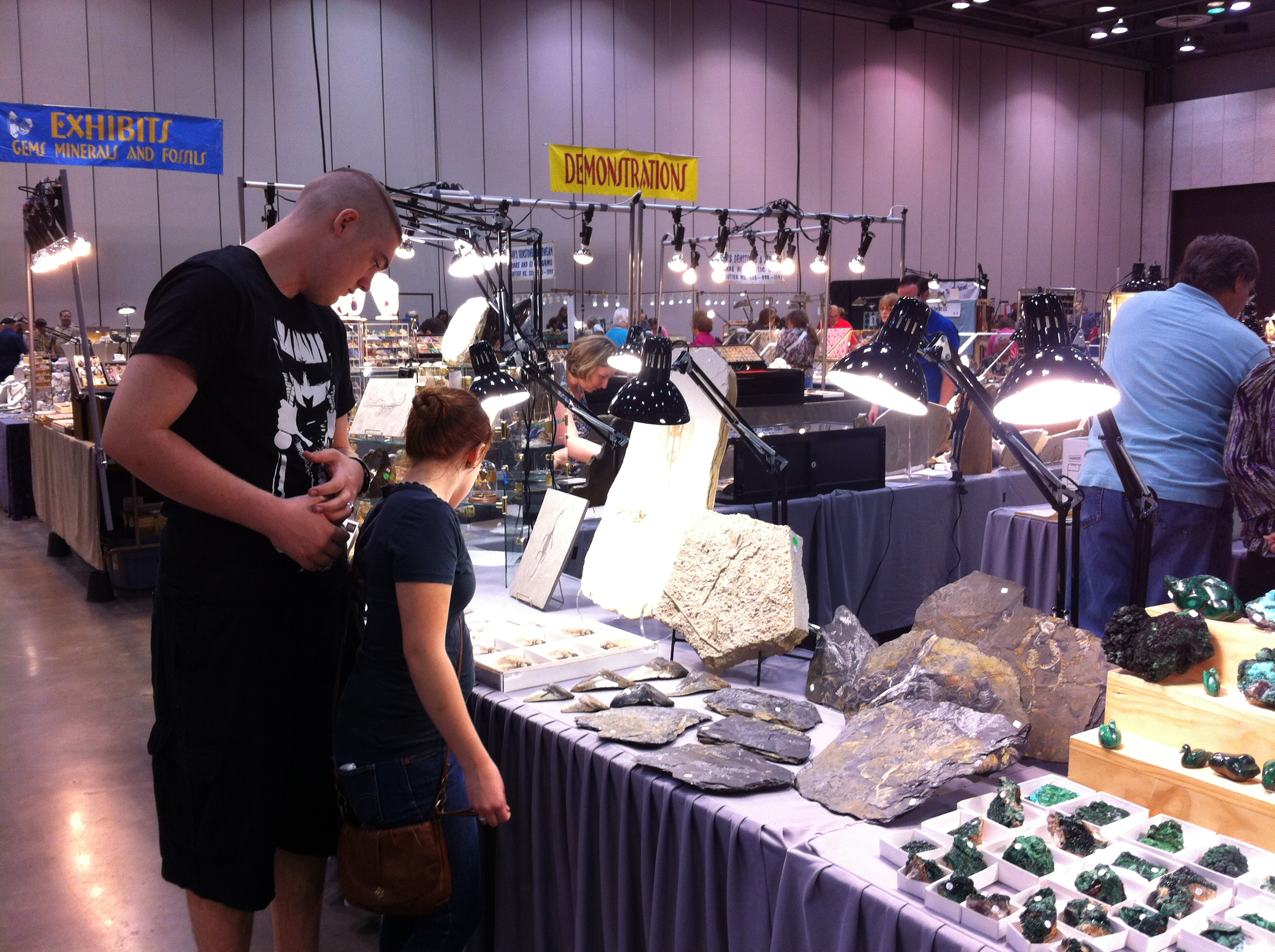 Fossils and minerals at the Huntsville Gem, Jewelry, and Mineral Show