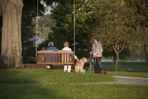 Residents Conversing While Their Dogs Meet