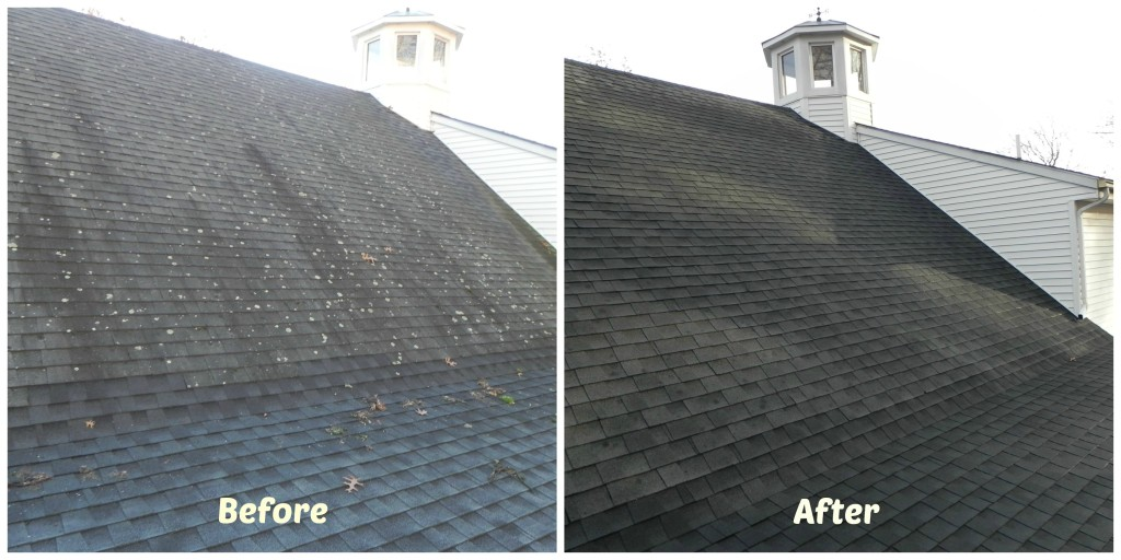 Roof Cleaning Perfection. Before and after picture of roof benefitting from our roof cleaning services!