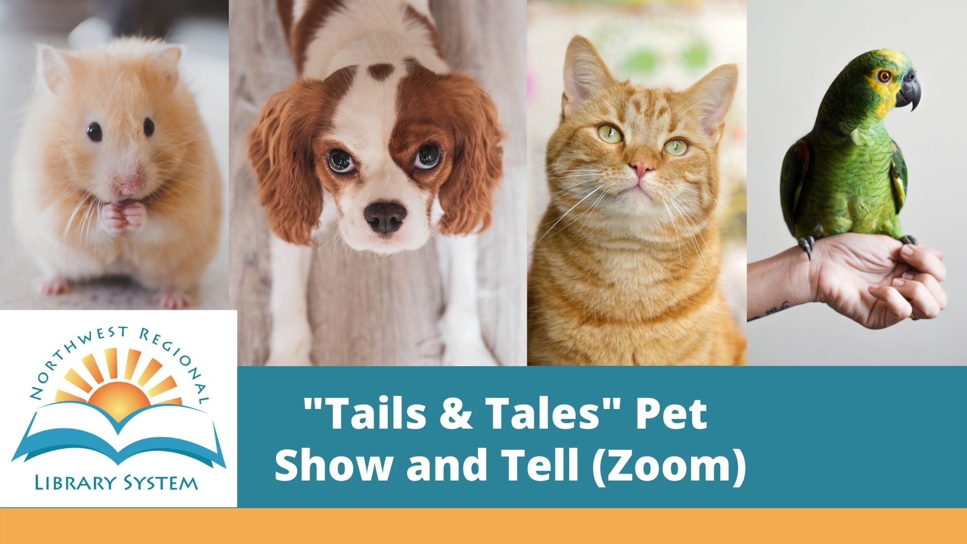 Pet Show and Tell (Zoom)