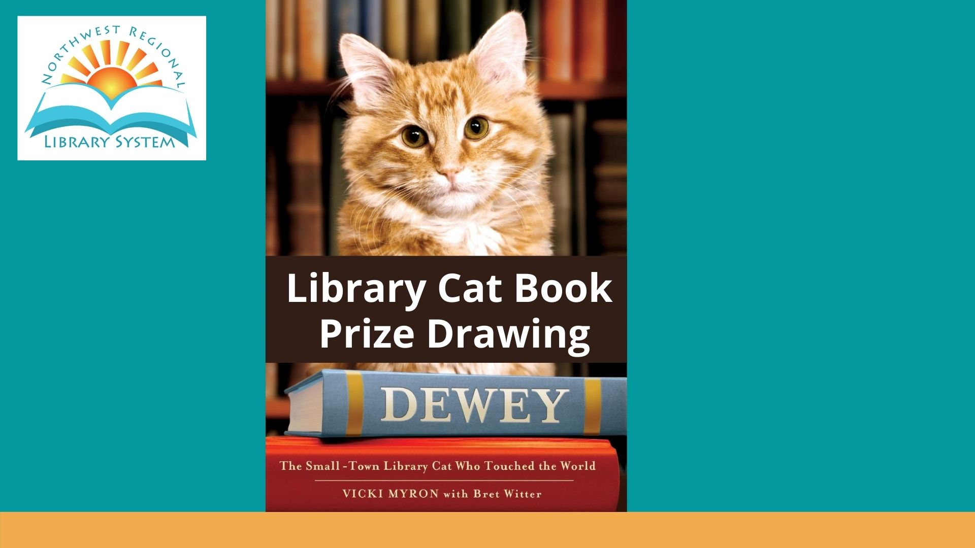 Library Cat Book Prize Drawing