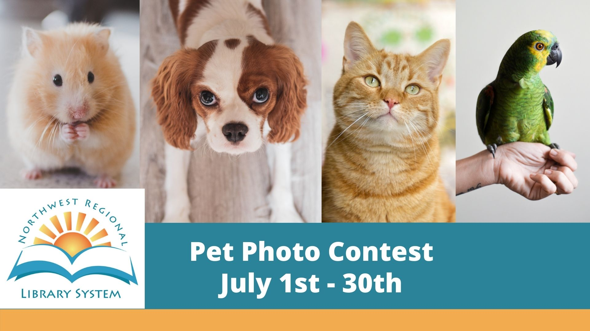 Pet Photo Contest for adults at Wewahitchka Library