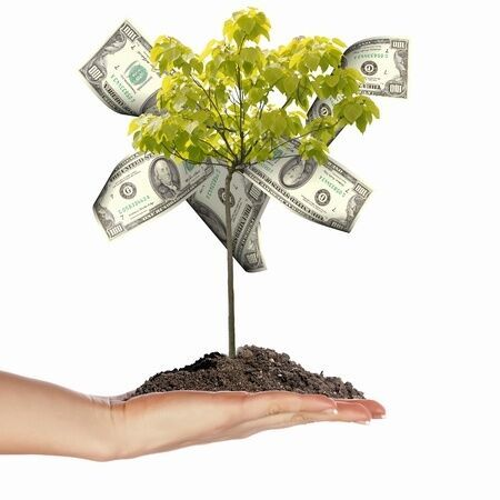 Sources for your Start-Up's Seed Money