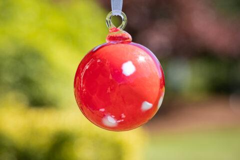 Skyler's Ornament