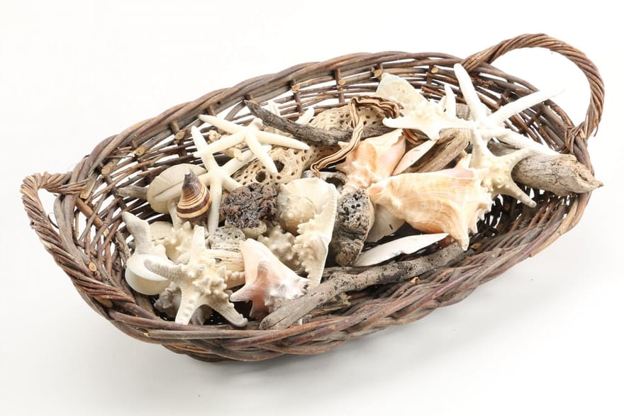basket with shells and driftwood for funeral service