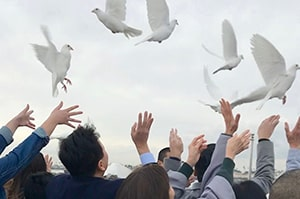 Releasing doves at funeral near long beach ca