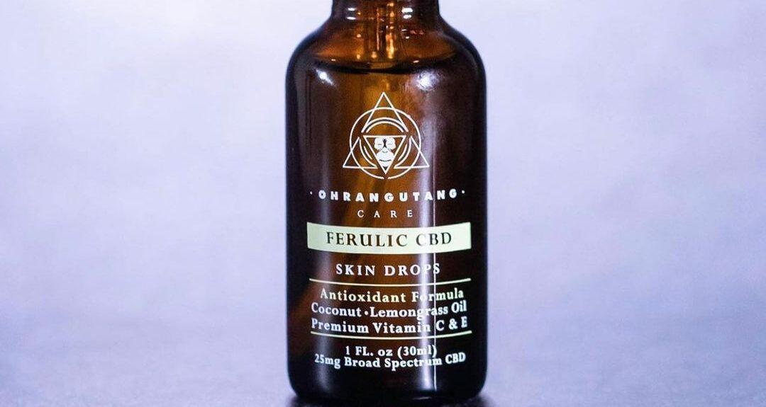 """Featured image for """"Ácido ferúlico: el antioxidante perfecto para reforzar otros productos en tu rutina diaria"""""""