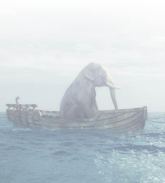 Elephant in a row boat