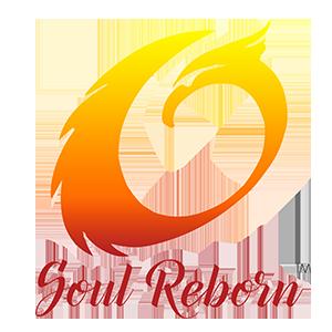 Soul Reborn