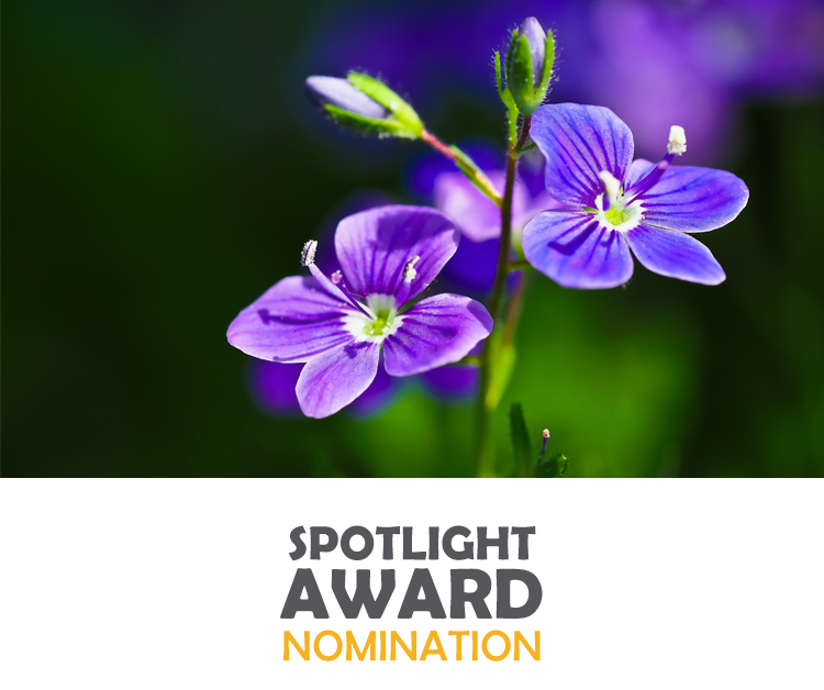 You are currently viewing LPFCC Nominated for Local First Nonprofit Spotlight Award