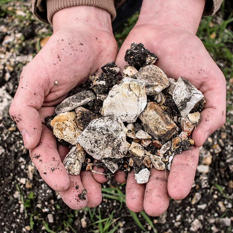 Hands holding vineyard soil
