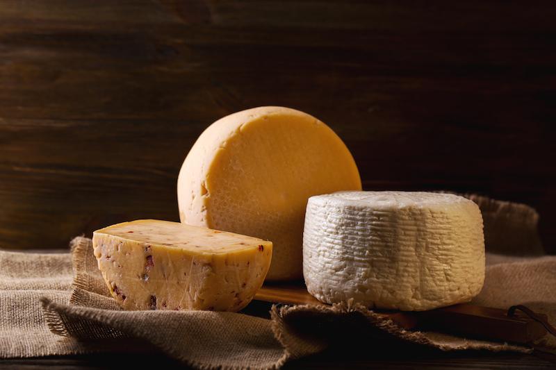 cultivos para quesos quito