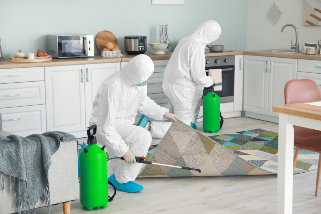 Slider_2_Steam_Cleaning_Disinfecting