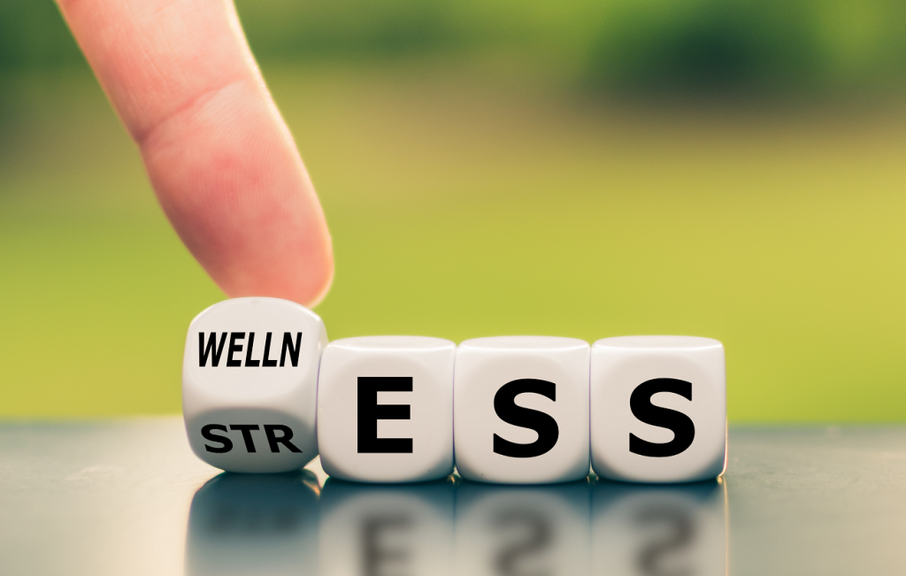 STRESS MANAGEMENT SERVICES PALM HARBOR