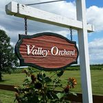 valley.orchard