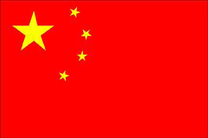 International Sales - China