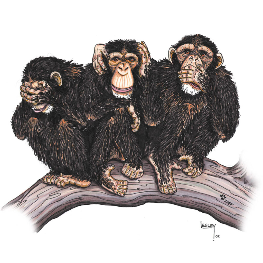 Cartoon Illustration - see hear speak no evil