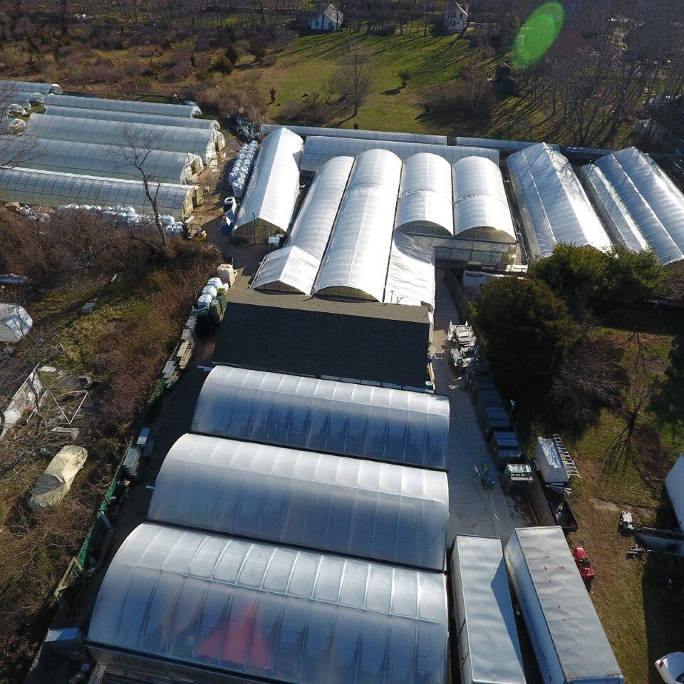 greenhouse overhead picture (1)