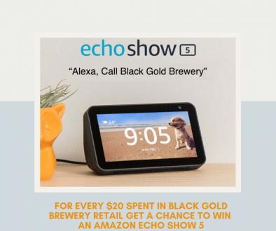 echoshowdraw