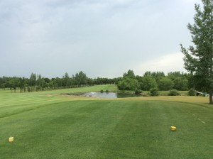 West #4 Over the pond