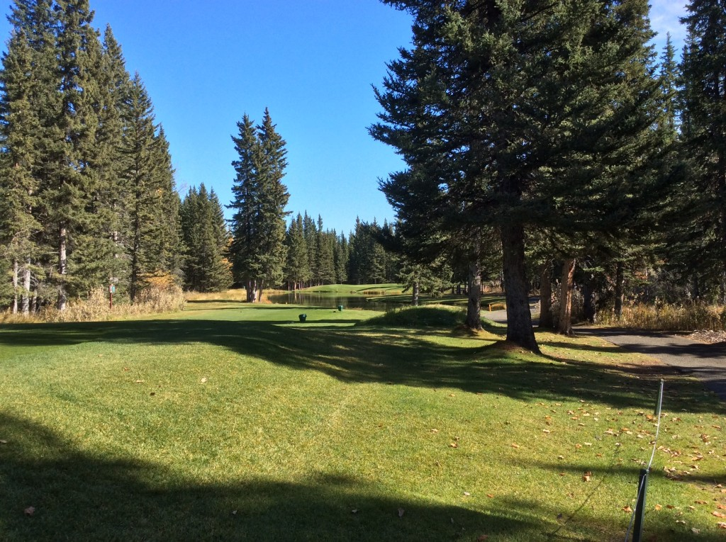Redwood Meadows