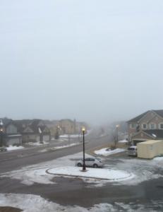 Foggy day in the neighbourhood