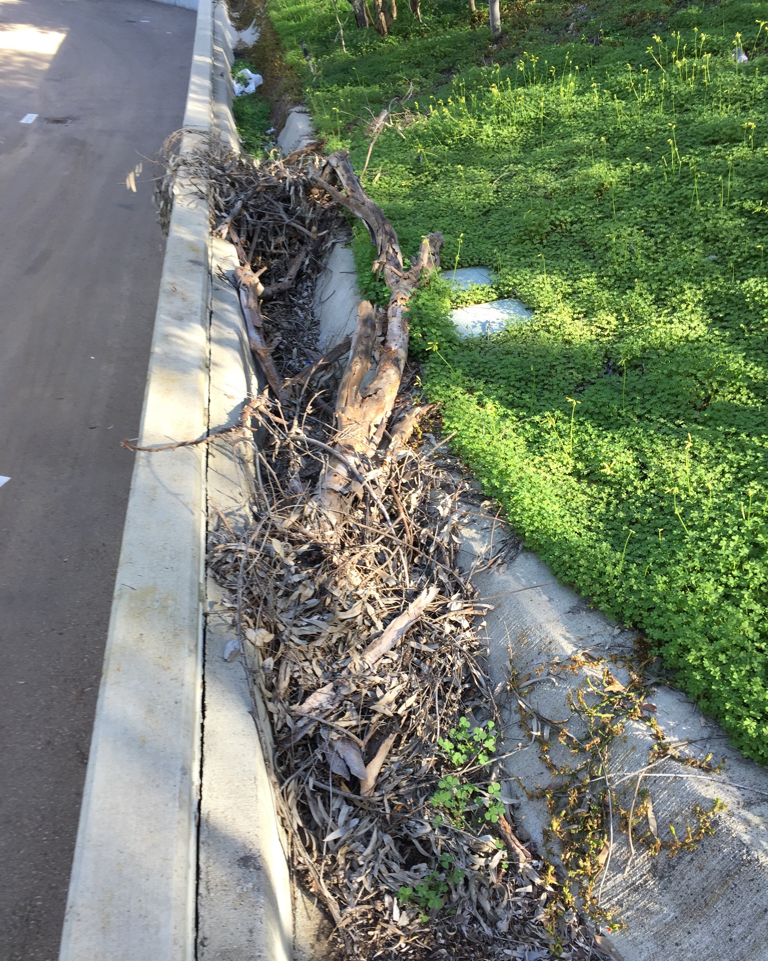 stormwater culvert needs service