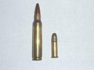 both-22-caliber