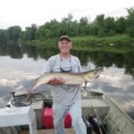 Tiger Muskie caught on a fly rod