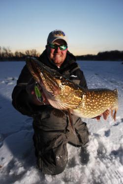 Pike through the ice
