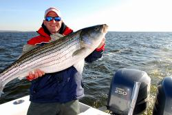 Use soft  natural baits