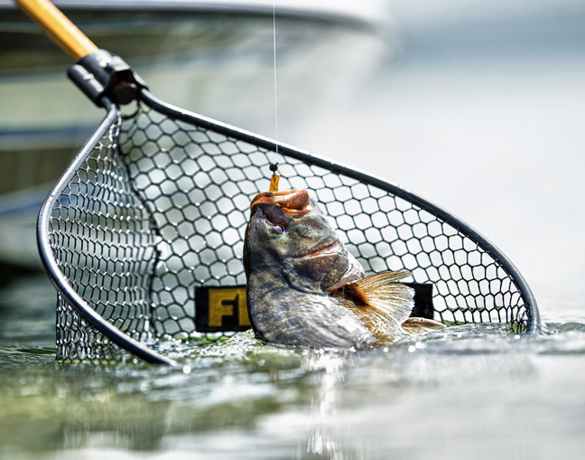 The right net protects the fish