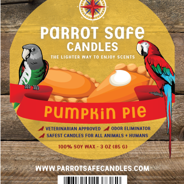 Pumpkin Pie Wax Melts - World's Safest Candles - Parrot Safe Candles