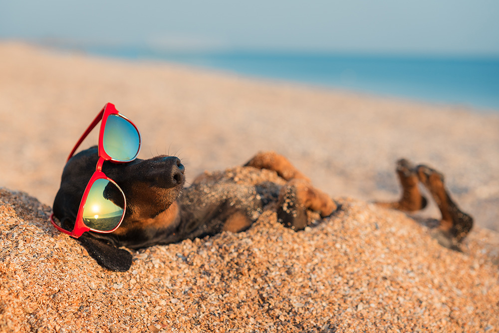 Summer slowdown tips for business owners