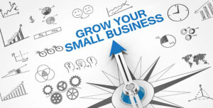 Grow your small business with SEO, Social Media, Link Building Marketing