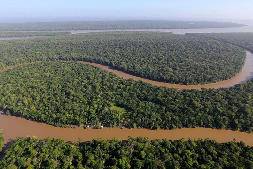 Soluções para Amazônia são apresentadas em webinar global sobre felicidade e sustentabilidade