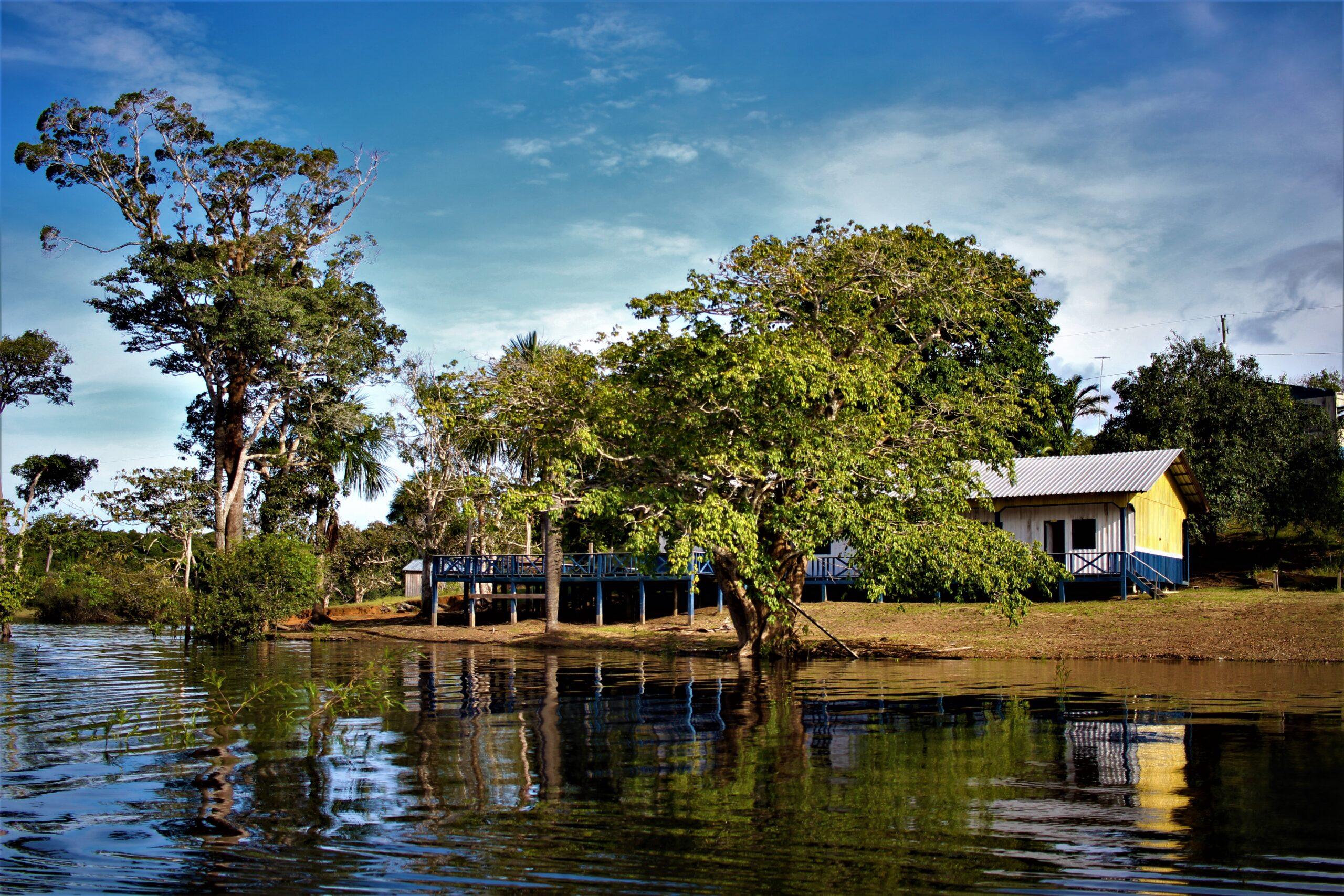 SDSN Amazônia realiza encontro virtual com seus membros para debater temática de projetos regionais