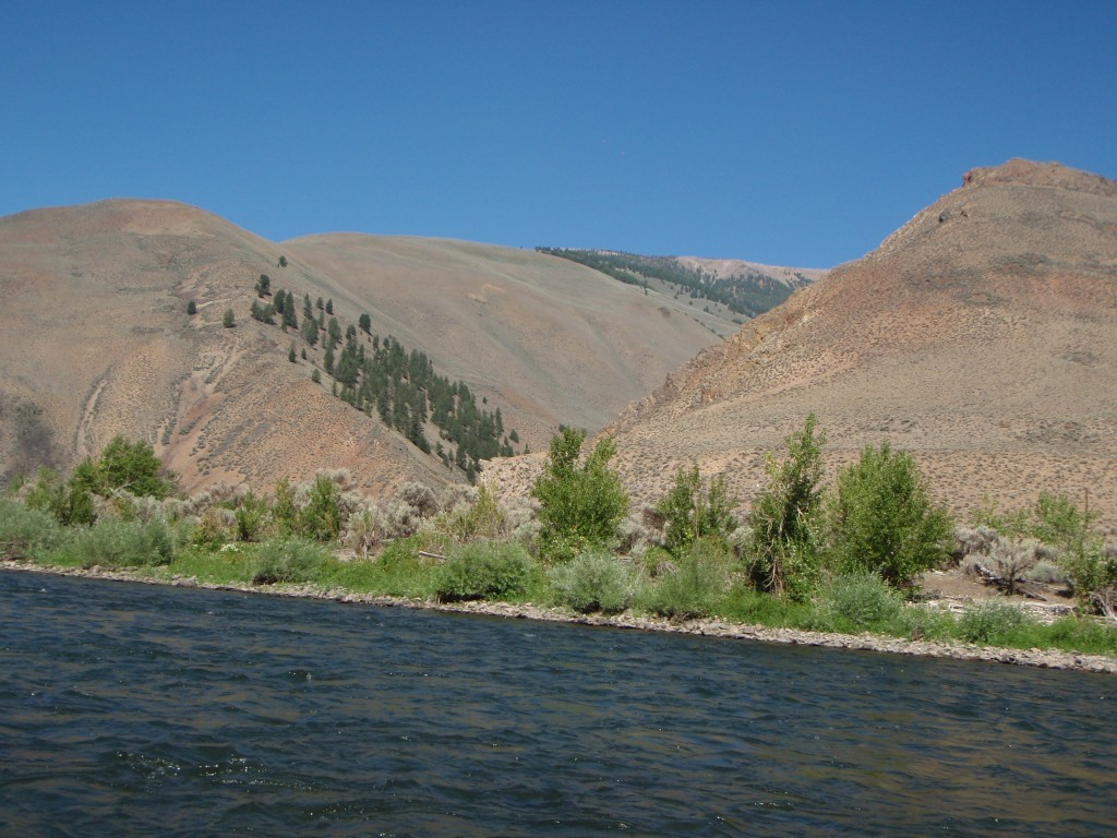 These 3 photos were taken from the same spot. One looking upstream, another downstream, and then cross stream.
