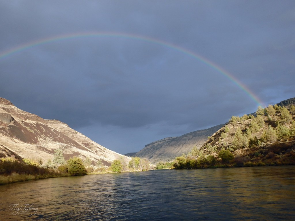 Later afternoon sun and showers entice another rainbow