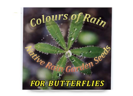 New England native rain garden seeds