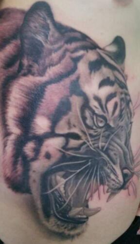 Scott Ford Tattoos - tiger