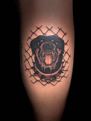 Dylan Llewellyn Tattoos -  dog