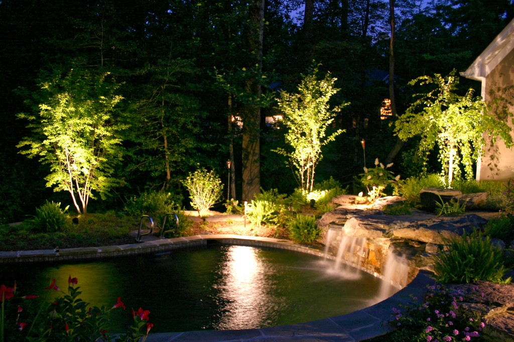 pool and landscaping with lightscaping