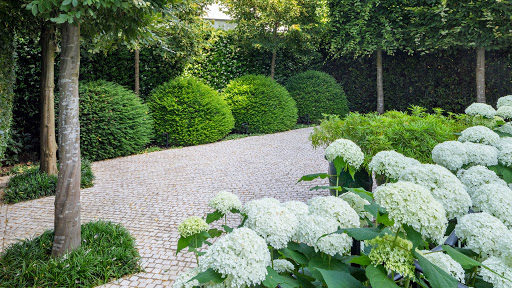 beautifully designed and maintained shrub and flowers