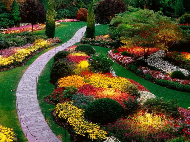 colorful landscaping design