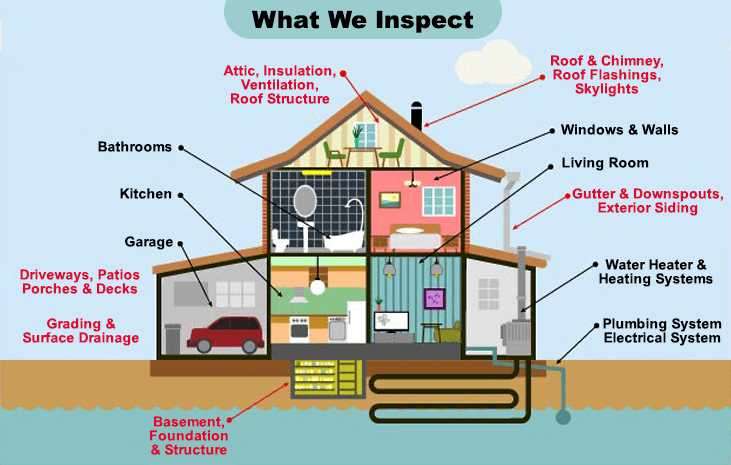 what-we-inspect